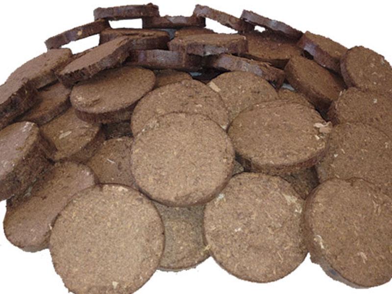 briquette biscuits